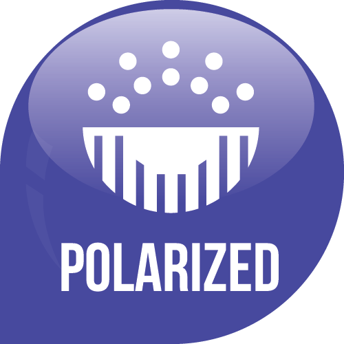 Polarized Icon